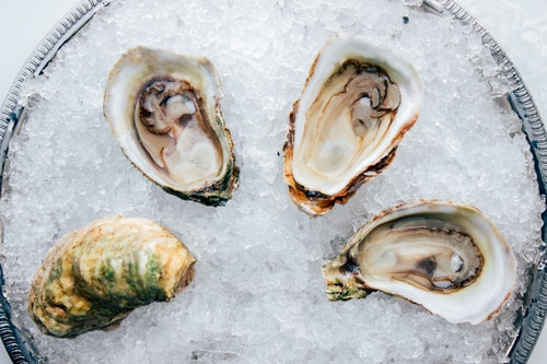 Picture of Oysters, Sunberry Point